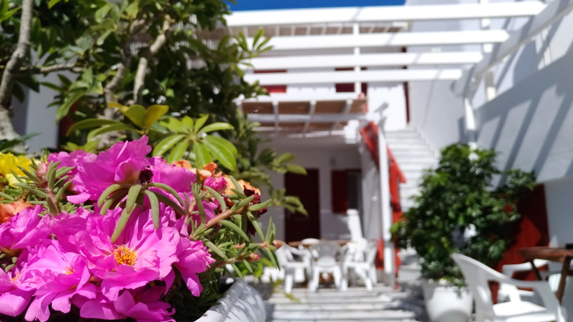 Mykonos Marina In Town - Rooms for rent - Slider 2