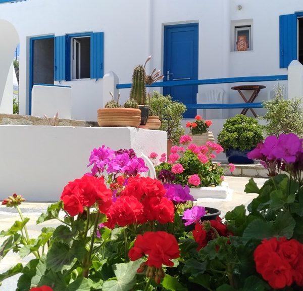 Marina In Town Mykonos - Rooms for Rent in Mykonos Town, Greece
